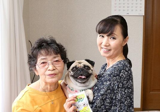 愛知県パグ スズちゃん取材