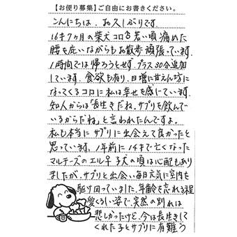 コロくん 画像1