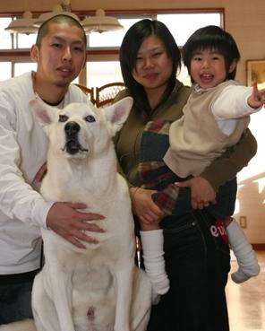 ミックス犬(アックスくん)の体験談