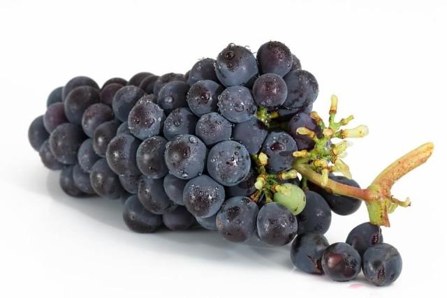 grapes-2032838_960_720