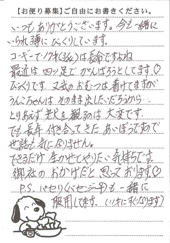プランジャーくん・パセリちゃん 画像1