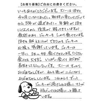 スノーちゃん 画像1