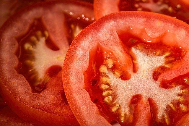 愛犬にトマトを与えるときはへたをとって刻む!一日の目安量と正しい与え方